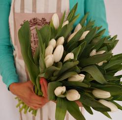 Купить букет тюльпаны дешево челябинск цветов орле возле